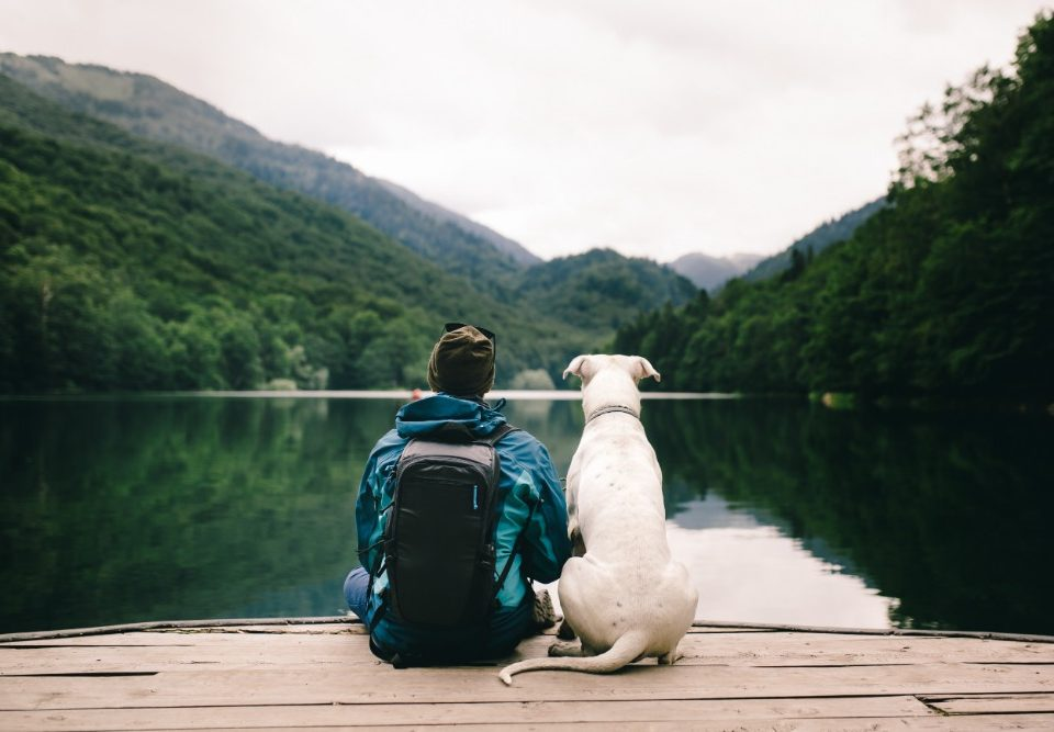 How Nature Debunks The Myth of Isolation